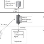 About the Oracle Cloud Control 12c Components